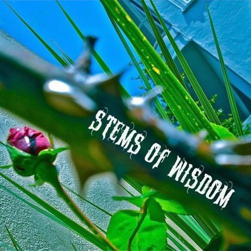 STEMS OF WiSDOM's avatar