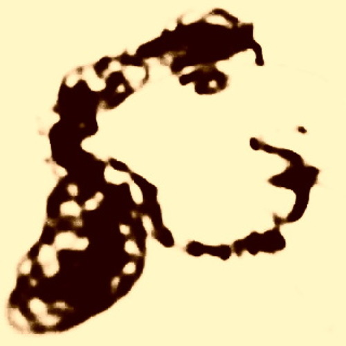Movement .'s avatar