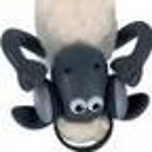 Eran Rundstein's avatar
