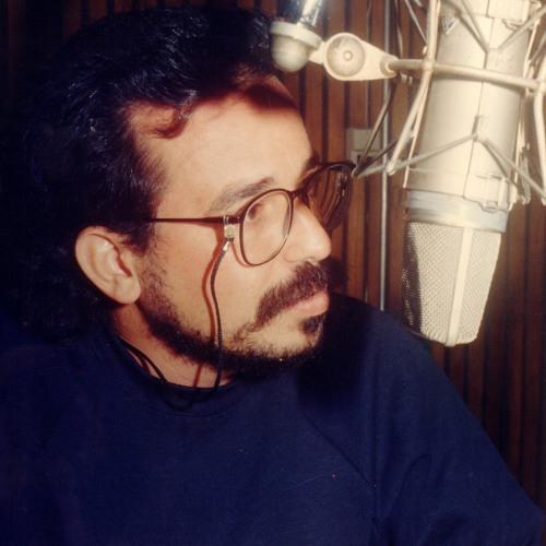 El arte de hacer radio's avatar