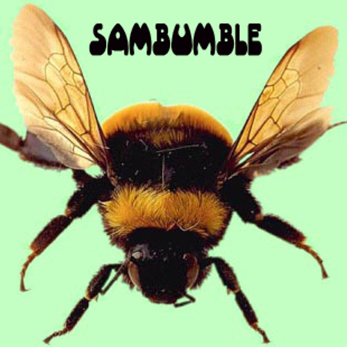 SamBumble - BHB's avatar