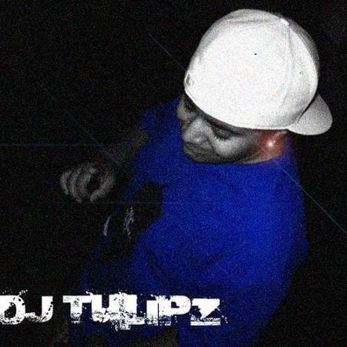 DJTulipz's avatar