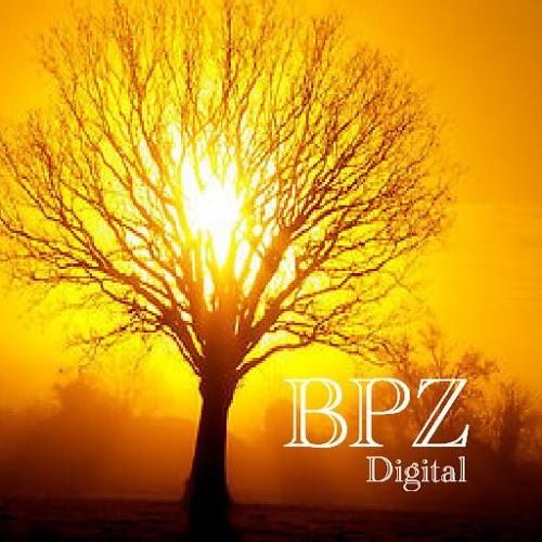 BPZ Digital's avatar