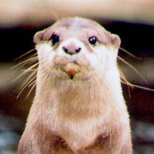 Mr Otter's avatar