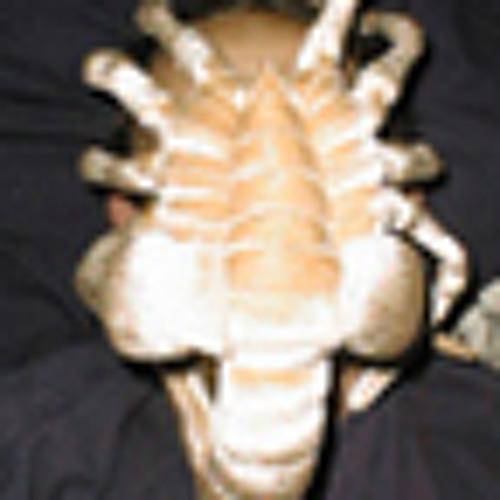 Crocuta's avatar