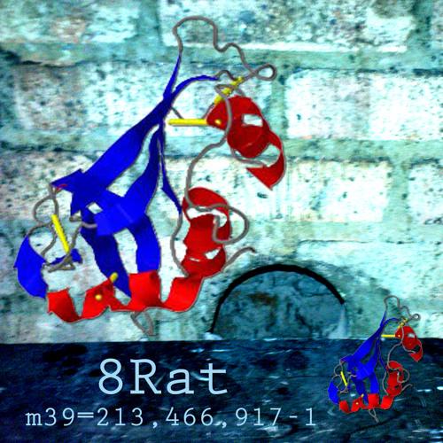8Rat's avatar