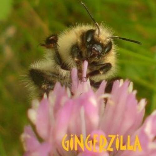 theGingerZilla's avatar