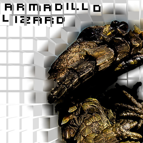 armadillo lizard's avatar