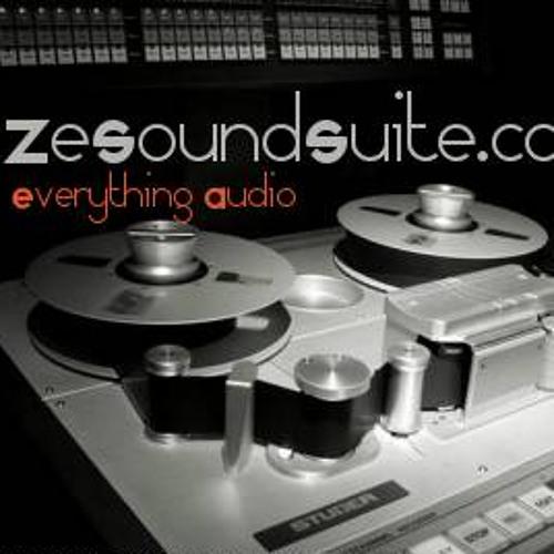 ZeSoundSuite Dot Com's avatar