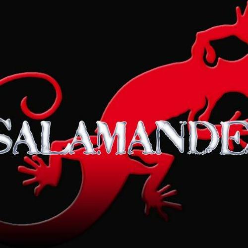 DJ Salajutsu's avatar