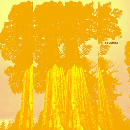 Sequoia's avatar
