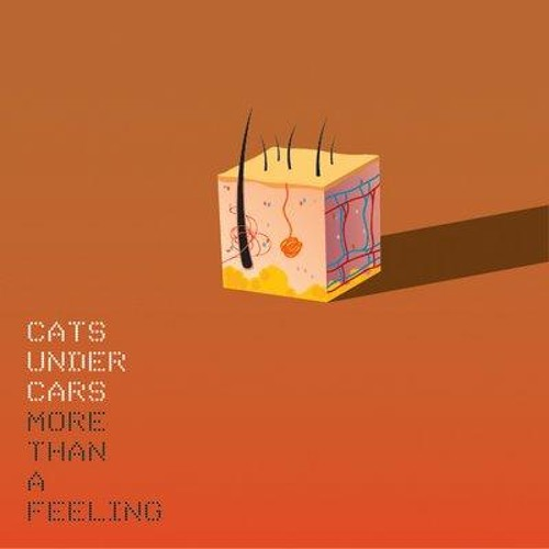 Cats Under Cars's avatar