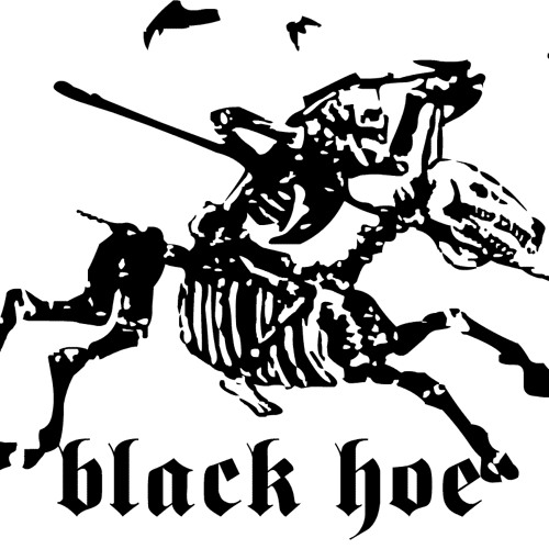 Black Hoe Recordings's avatar