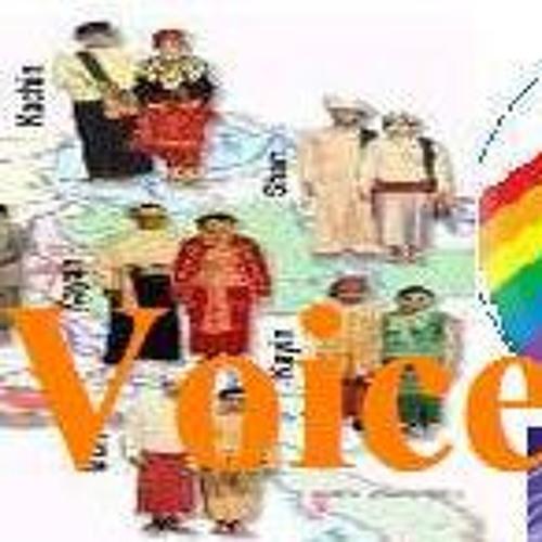 Ethnic Voice of Burma's avatar