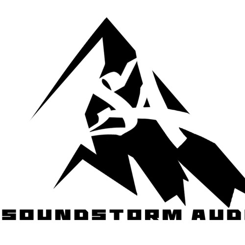 SOUNDSTORM AUDIO's avatar