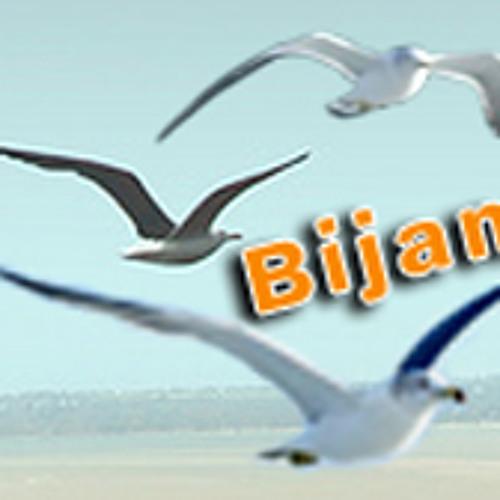 Bijan Fard's avatar