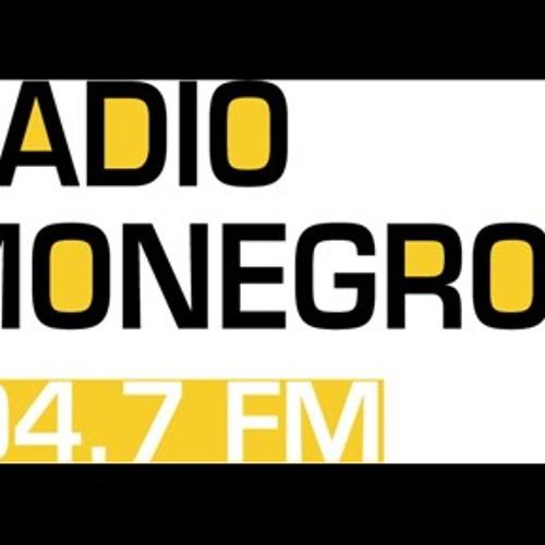 RADIO MONEGROS's avatar