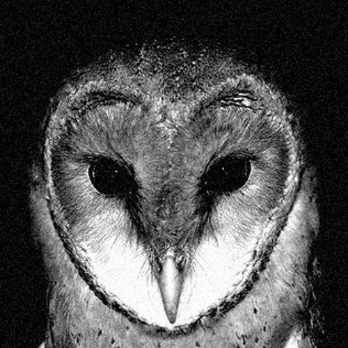 HONOM's avatar