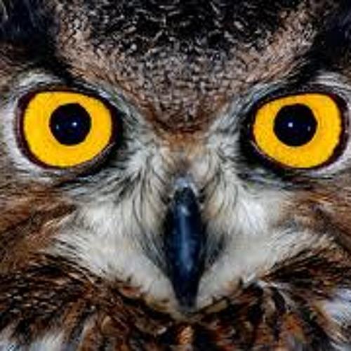 !OwlEyes!'s avatar