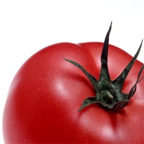 tomatochan's avatar