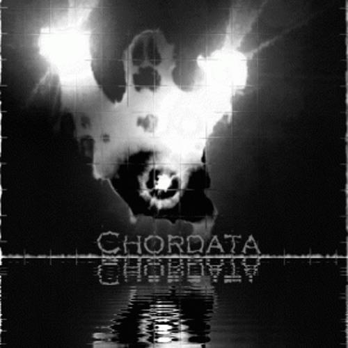 chordata's avatar