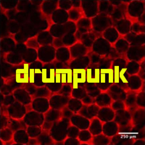 drumpunk's avatar