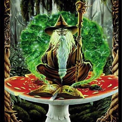 Le Druide [Fantazy Rec]'s avatar