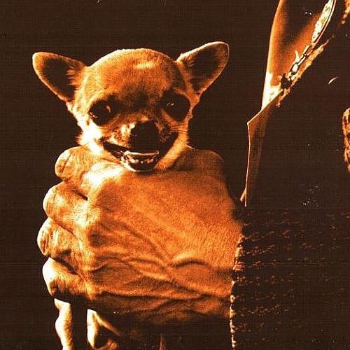 Gobio's avatar