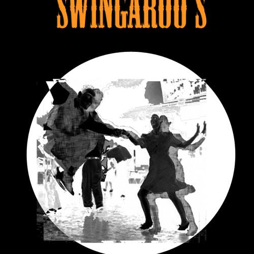 swingaroo's's avatar