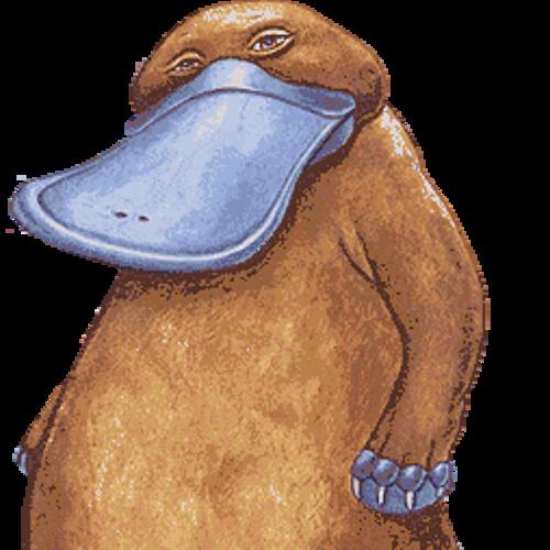 The DUKBILL's avatar