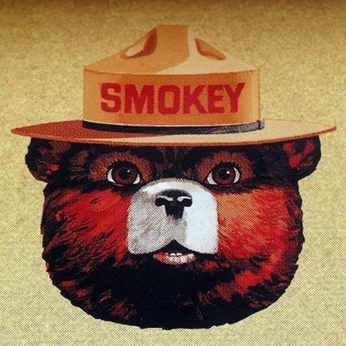 Smokey le Bear's avatar