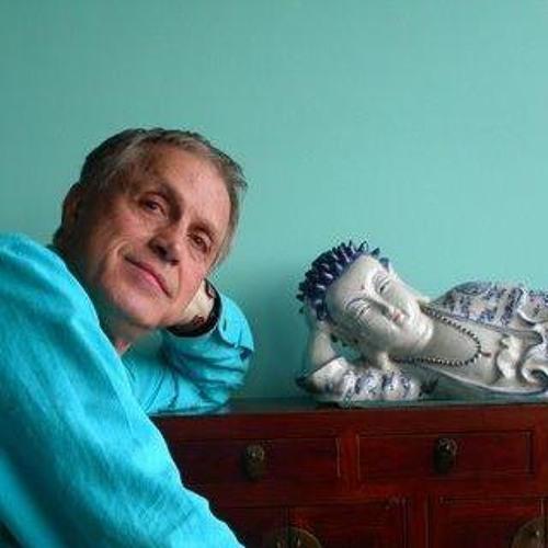 Gerald Florian Messner's avatar
