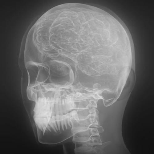 HEAD!'s avatar
