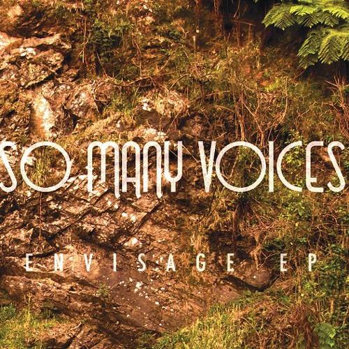 So Many Voices's avatar