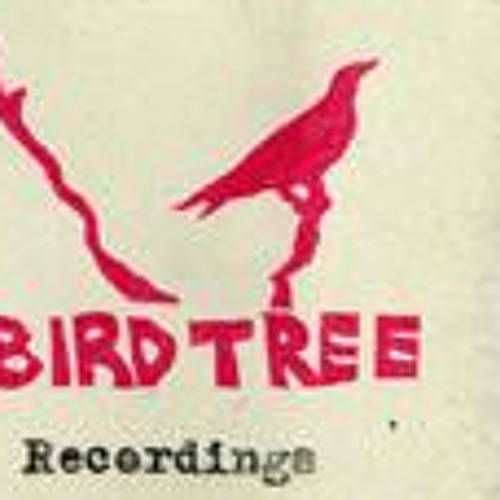 birdtree recordings's avatar