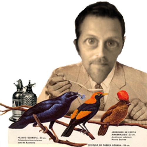 matesola's avatar