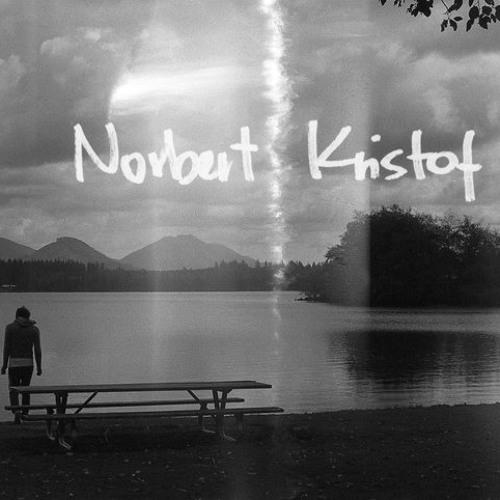 Norbert Kristof's avatar