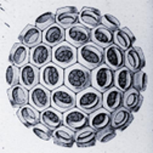 radiolarium's avatar
