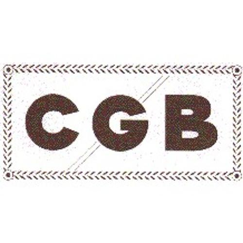 CGB-1's avatar