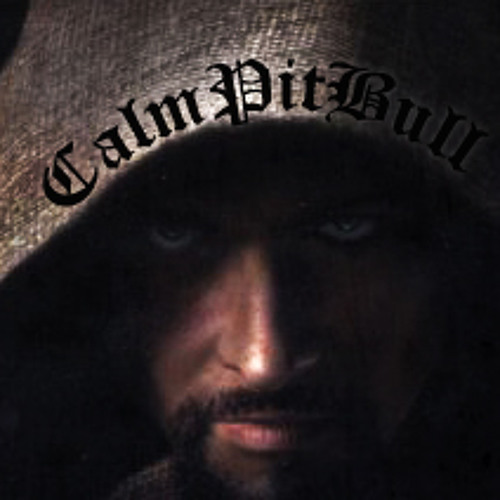 CalmPitBull's avatar