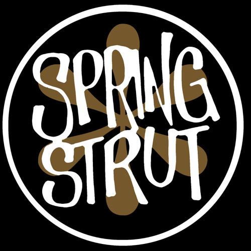 Spring Strut Rec's avatar