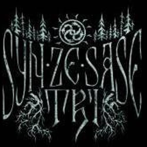 SynZeSaseTri's avatar