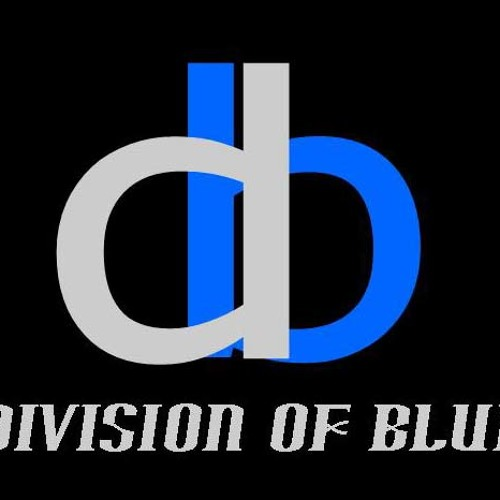 DIVISION OF BLUE's avatar