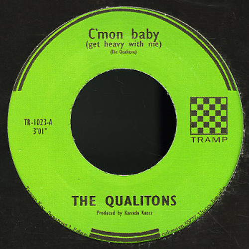 The Qualitons's avatar