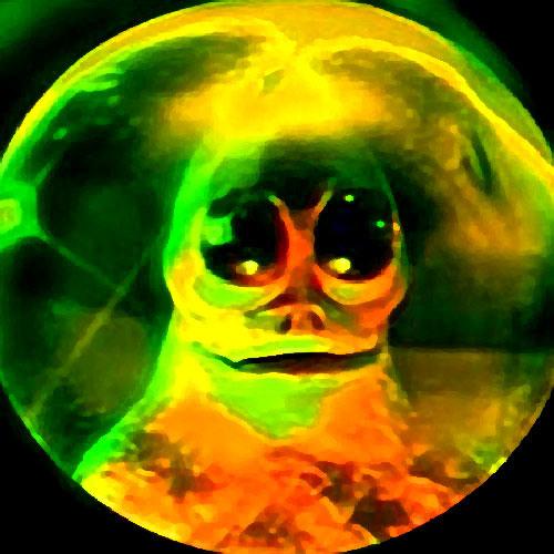 Timedoor's avatar