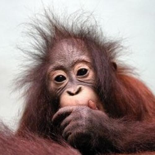 bounz's avatar