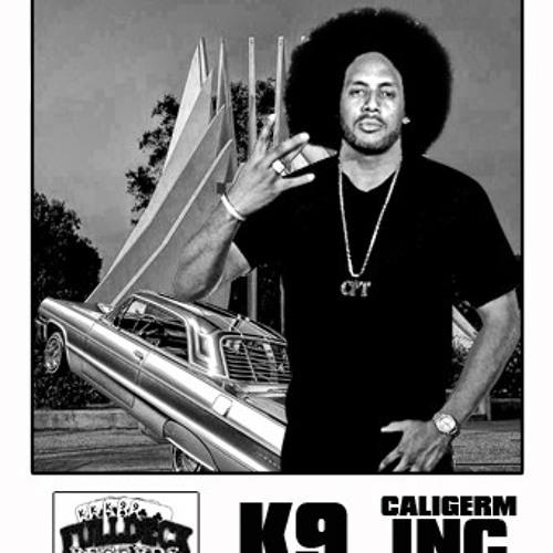 K9 Compton's avatar