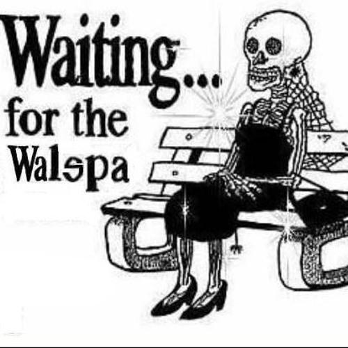 walspa's avatar