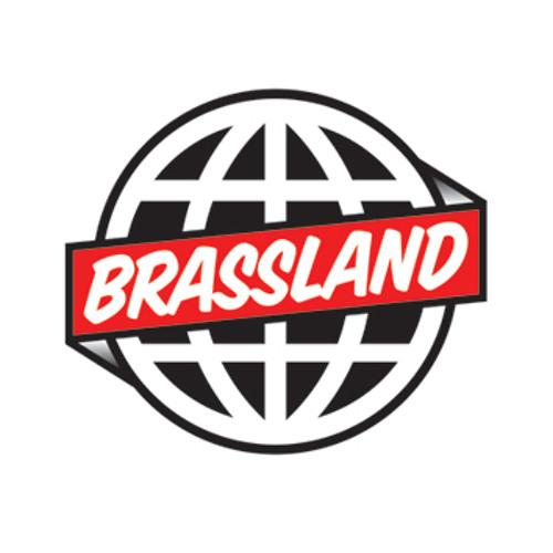 Brassland's avatar