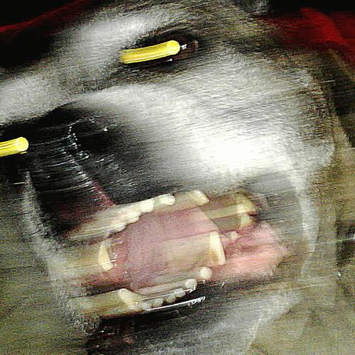 koudvuur's avatar
